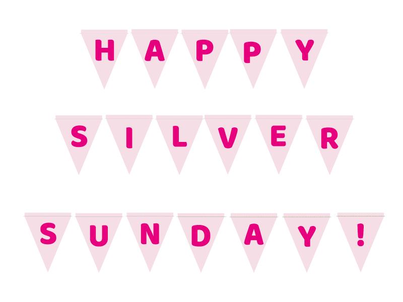 Silver Sunday DIY Bunting